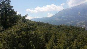 Antalya Altınyaka Yolundan Yayla Manzarası