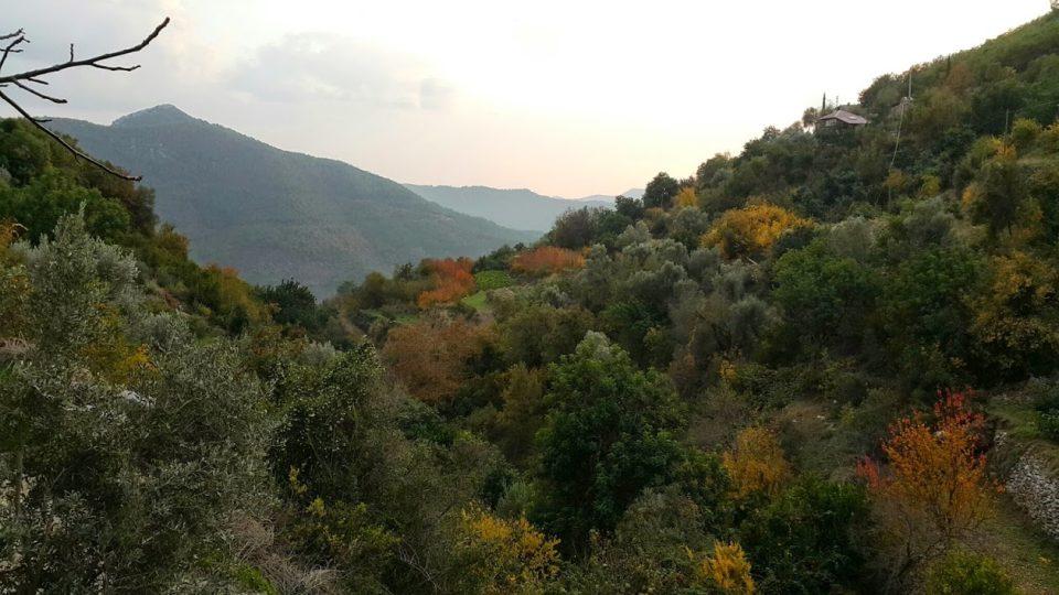Oradan Gelene – Ali Aksoy (Şiir)