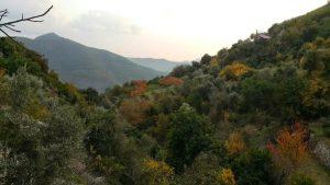 Oradan Gelene - Ali Aksoy (Şiir)