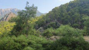 Hacisekiler Köyü Doğal Güzellikleri Konyaaltı Antalya