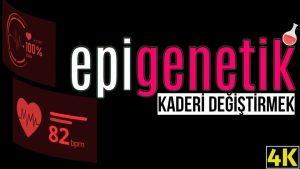 Epigenetik Ne Demektir ? Epigenetik ile insanın kaderi değiştirilebilir mi ?