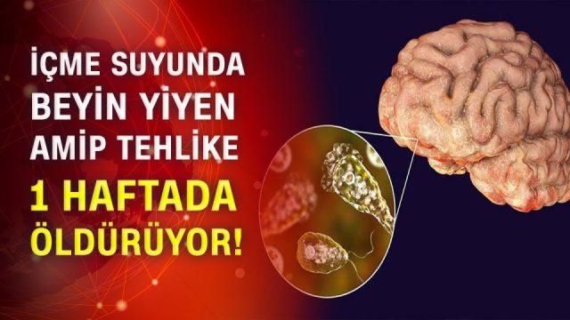 Beyin yiyen amip Naegleria Fowleri nedir ?