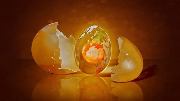 Andy Weir – Yumurta Hikayesinin Eleştirisi