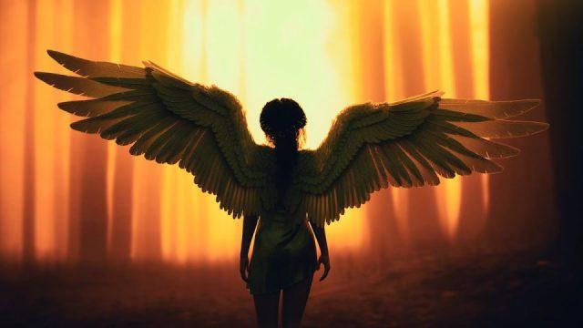 Meleklerin Müziği - Beden, Ruh Ve Ruhun Tüm Acılarını Iyileştiren Müzik, Meditasyon