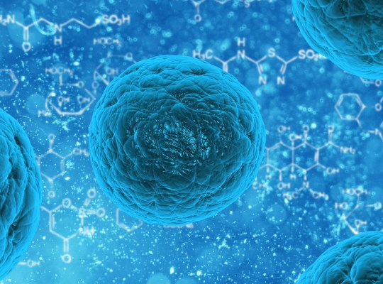 Your Cells are Listening: How talking to your body can help you heal