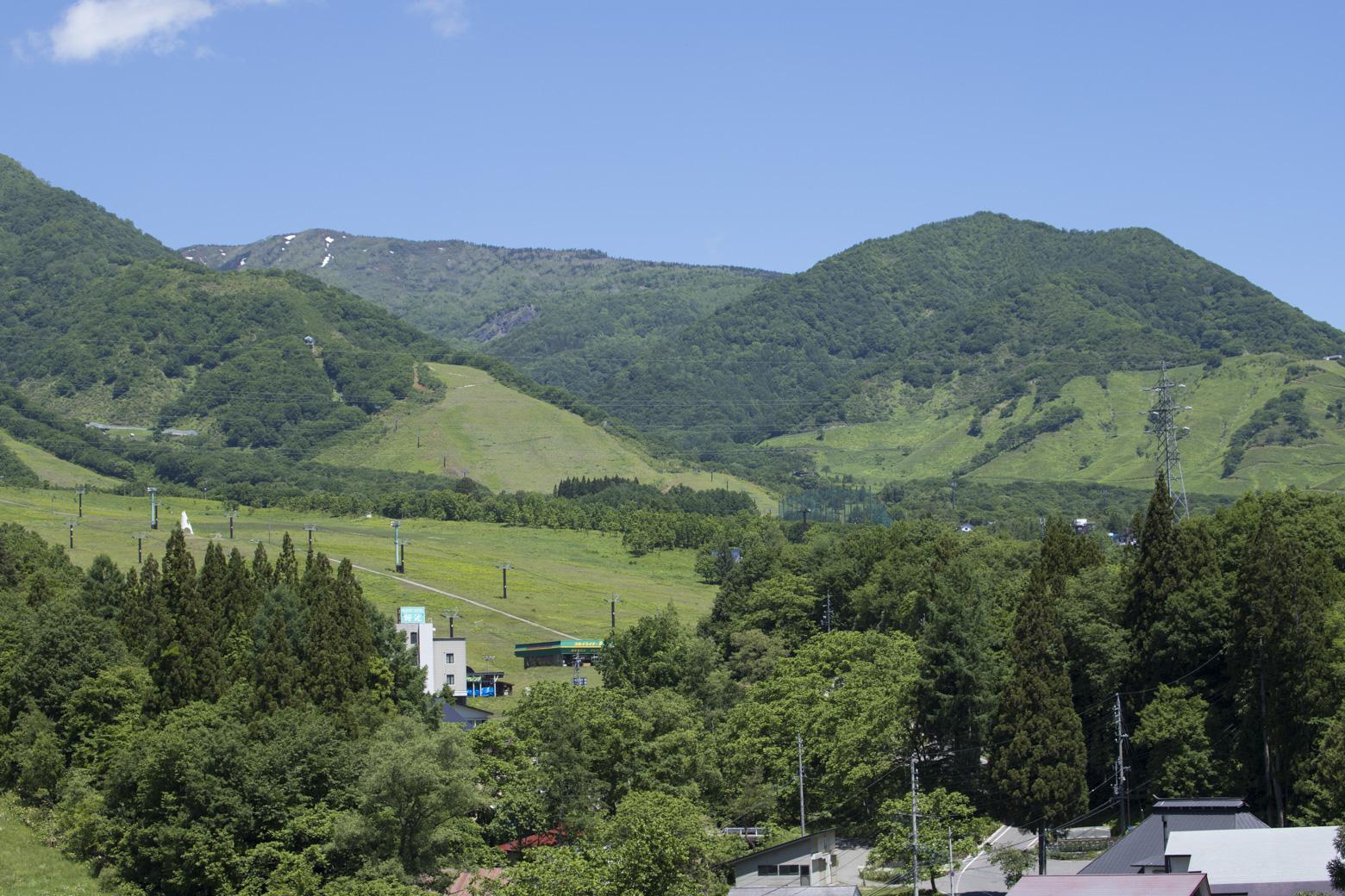 グリーンシーズンの栂池高原スキー場