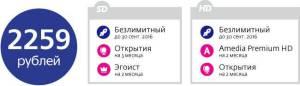 Акция Дачный Сезон от Телекарты Безлимитный