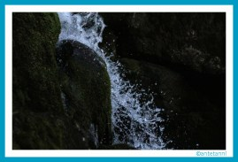 antetanni-unterwegs_Gertelbach-Wasserfaelle-Schwarzwald_2017-04_3