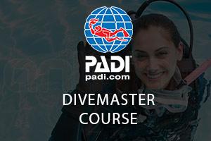 Divemaster-Course