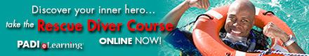 PADI Rescue Online Training