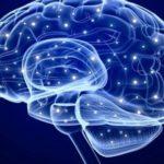 Σε ποια σημεία του εγκεφάλου διαφέρουν οι άνδρες από τις γυναίκες
