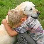 Ναι, οι σκύλοι συναισθάνονται τους ανθρώπους