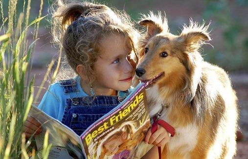 pet-dog-kind