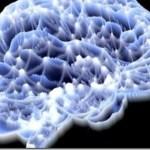 Γρήγορη ή αργή σκέψη; Είναι θέμα συγχρονισμού των νευρώνων