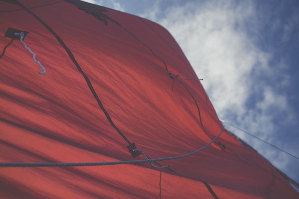Greenwood Mylor Yacht Harbour13