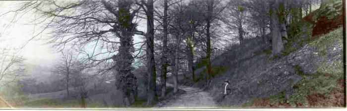 Kodak Panoram 1 145