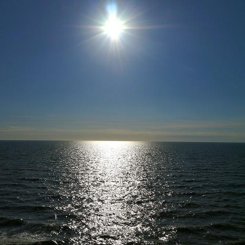 Sunny photo