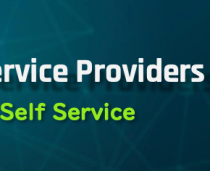 VMware Cloud Director Self Service Portal