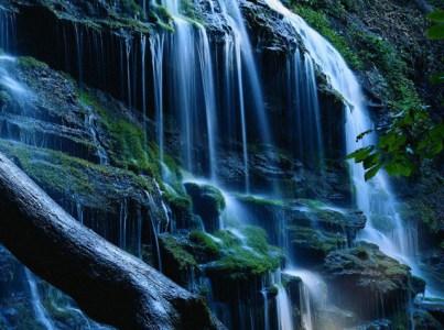 Die Natur als Erscheinung Gottes. Theosophie VII