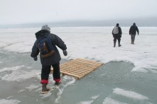 First steps on sea ice