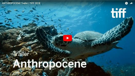Opening Title Shot to Anthropocene Documentary