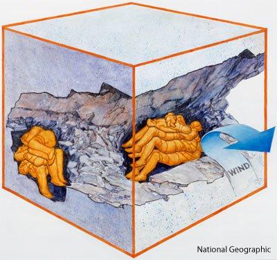 mummification vs fossilization anthropological