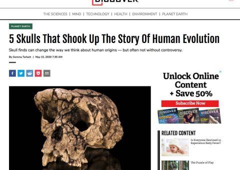 Screenshot of human evolution article