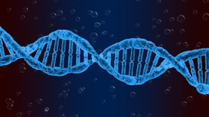 height genetics. image of a DNA double helix on a blue background.