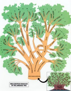The indo european language tree also branches of anthropology rh