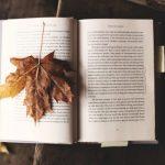 開いた本の上に落ち葉が乗っている