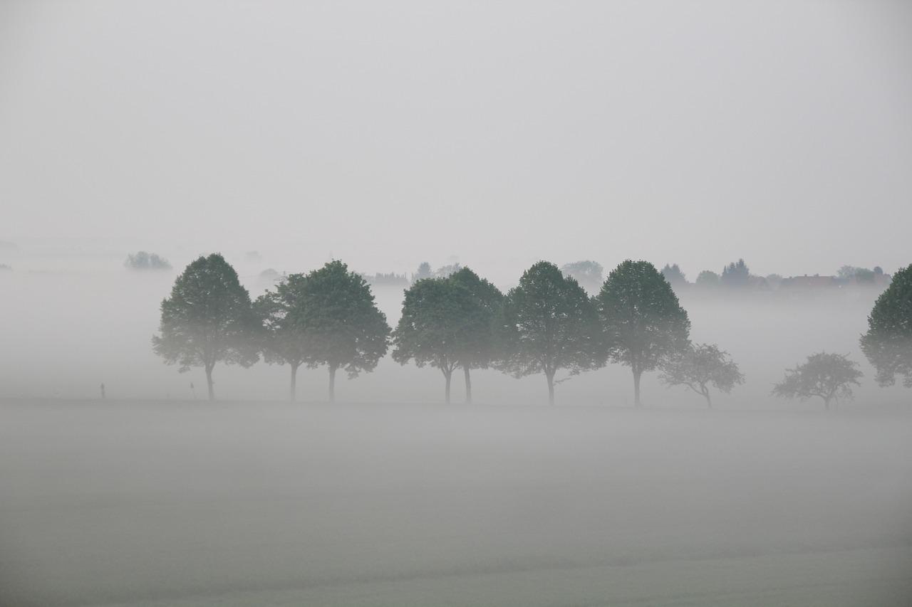 brouillard confusion tristesse
