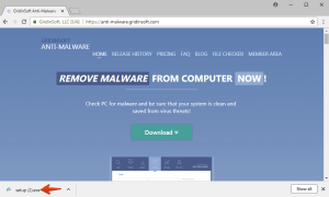 Milestone 1. Download GridinSoft Anti-Malware. Click on its installer in the left-bottom section of your browser.