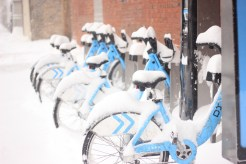 DIVVY bikes covered in snow
