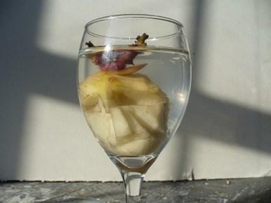 Cabeza en una copa (2008) - F. Tomsich