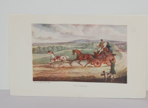 A set of 3 prints from 1903, printed in London