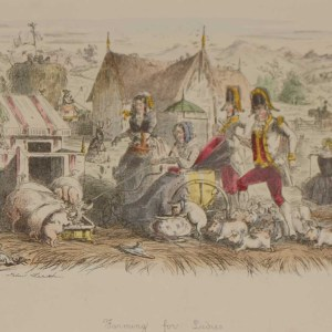 A 1866 antique print an etching after John Leech, hand coloured titles Farming for Ladies.