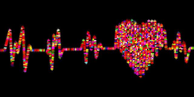 electrocardiogram-2858693_640.png