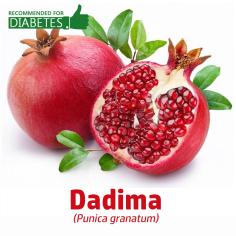 dadima-punica-granatum