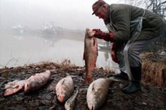 bancyanide_fishermen_300