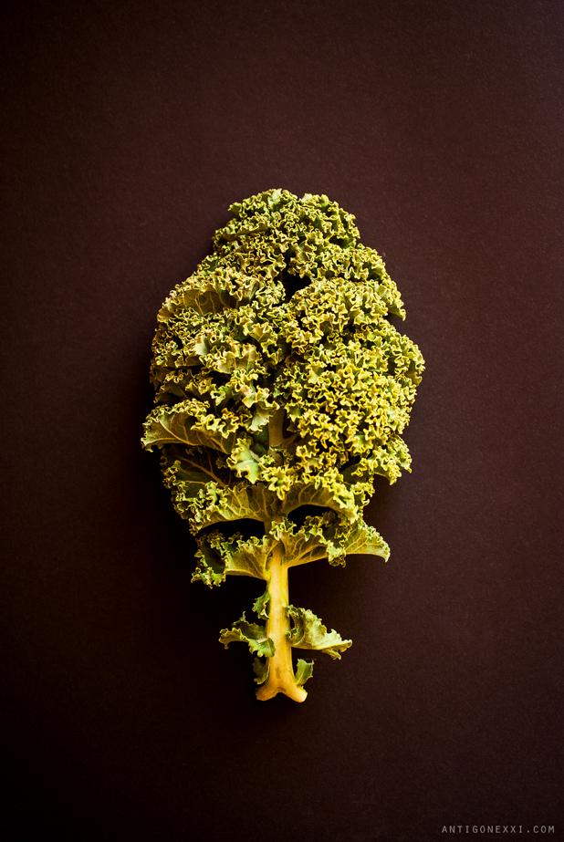 Kale - Antigone XXI