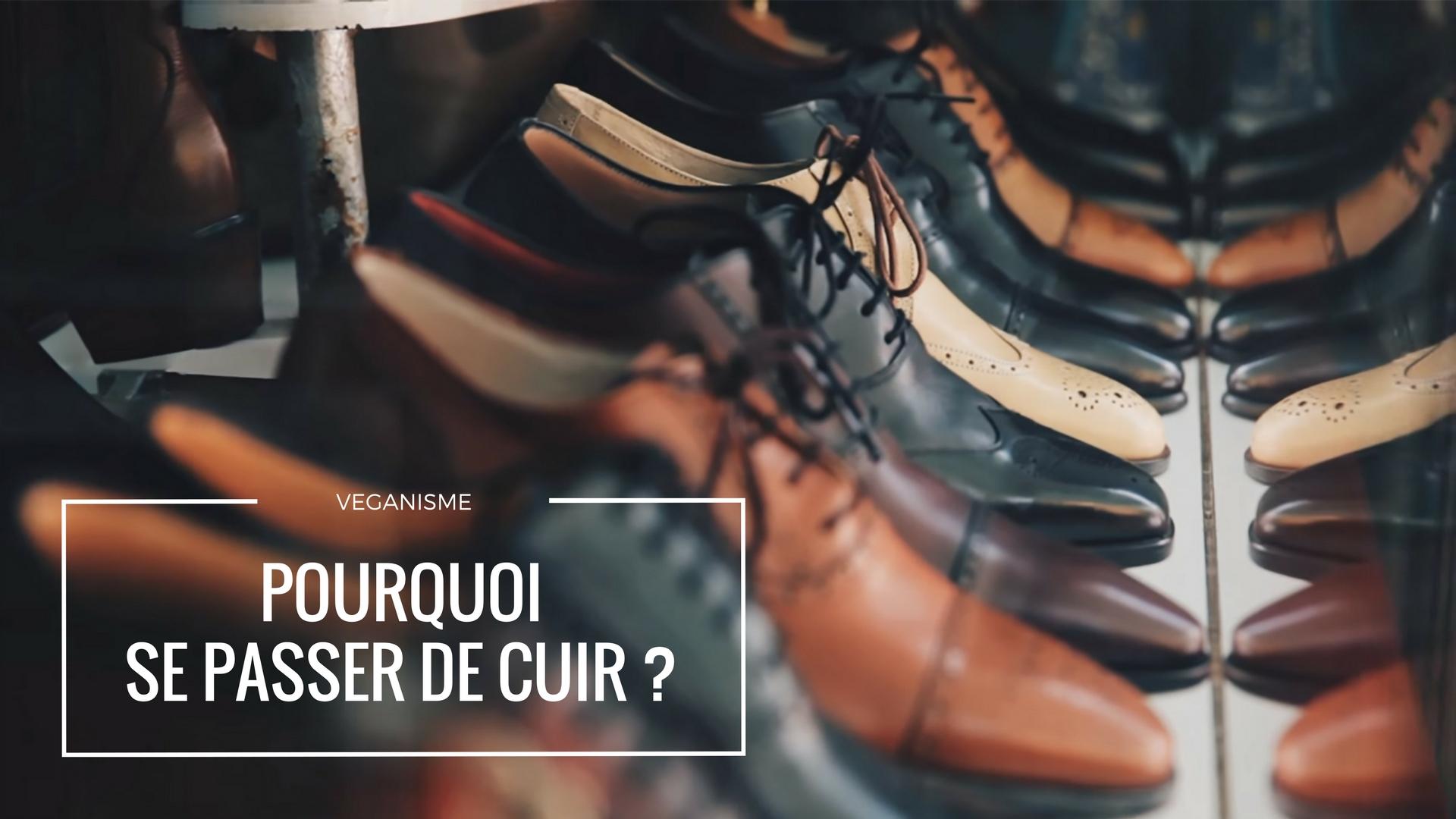 D Ou Vient Le Cuir véganisme : pourquoi se passer de cuir ?   antigone xxi