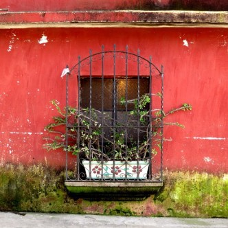 Textured Red Wall with a Window by Rudy Giron