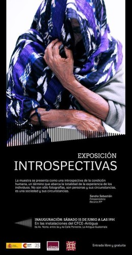 Afiche Exposición Introspectivas