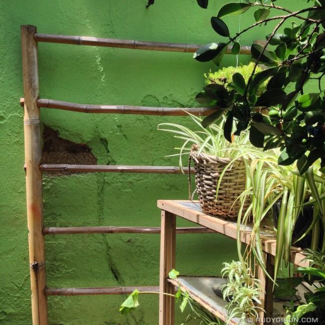 Rudy Giron: Antigua Guatemala &emdash; Guatemalan Summer's Shades of Green
