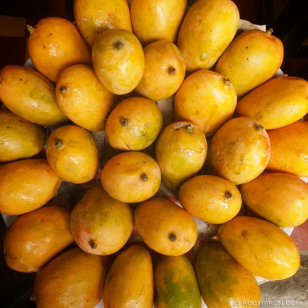 Rudy Giron: Instagrams &emdash; Mango Season in Antigua Guatemala