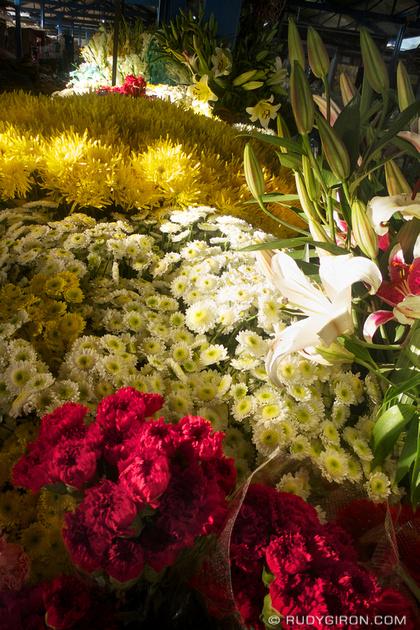 Rudy Giron: Antigua Guatemala &emdash; Flowers at el mercado, Antigua Guatemala