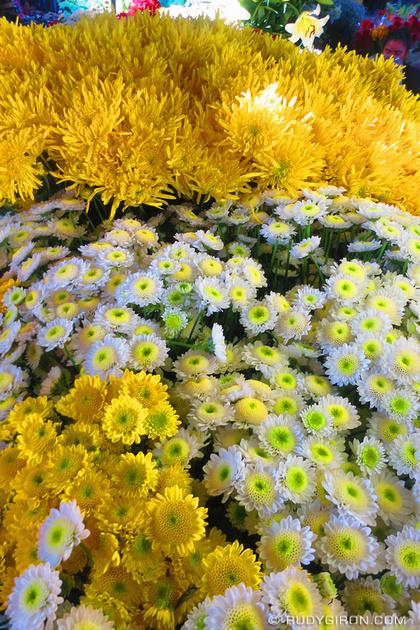 Rudy Giron: Antigua Guatemala &emdash; Yellow Flowers at el mercado, Antigua Guatemala