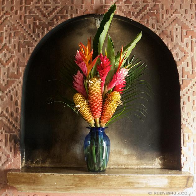 Rudy Giron: Instagrams &emdash; Flowers and aesthetics from La Antigua Guatemala