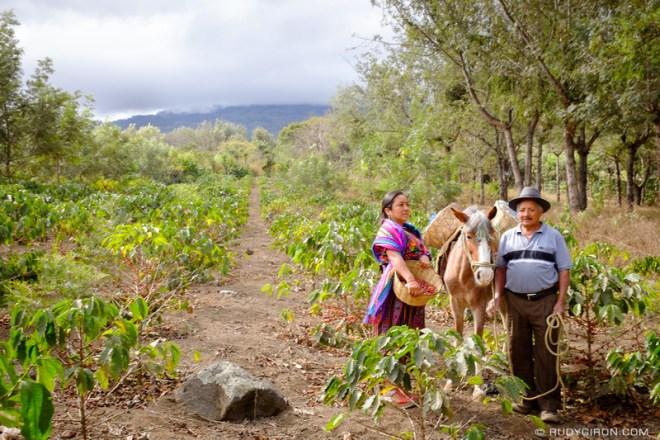 Rudy Giron: Antigua Guatemala &emdash; Maya Portraits — Maya Woman Harvesting Coffee 4