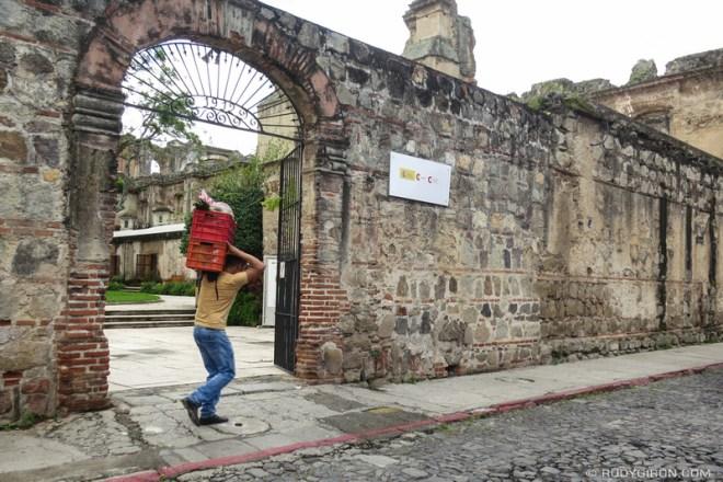 Rudy Giron: Antigua Guatemala &emdash; ADP — Vegetable delivery